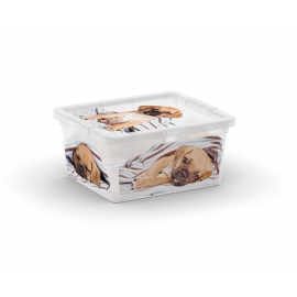 C-BOX Style Puppy&Kitten XXS